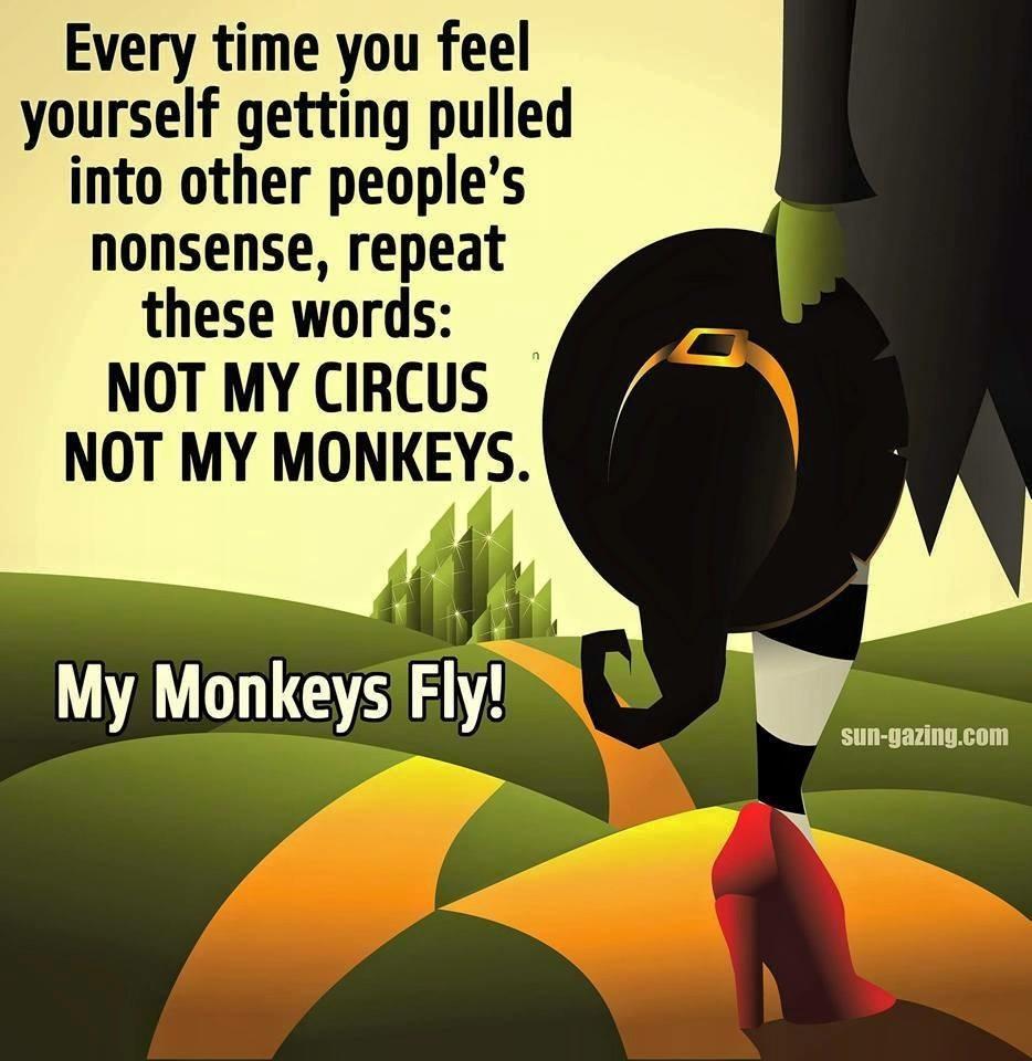 Not my circus not my monkeys photo 10